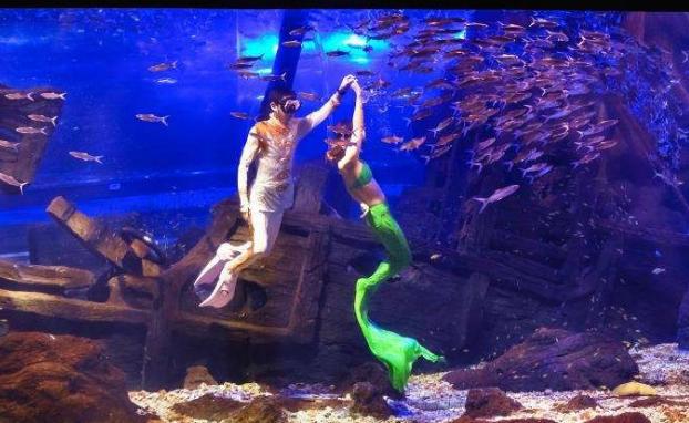 丹江口美人鱼表演
