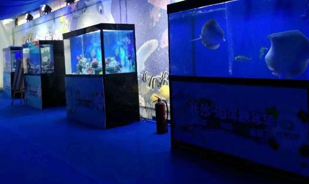 丹江口海洋生物展